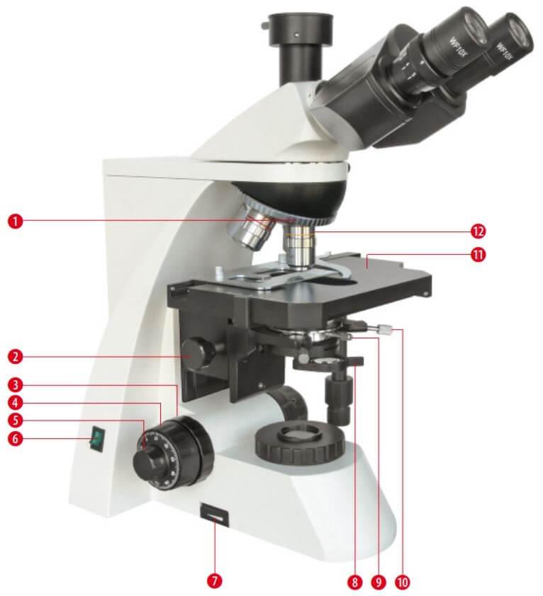 Composants du microscope Science TRM 301 trinoculaire