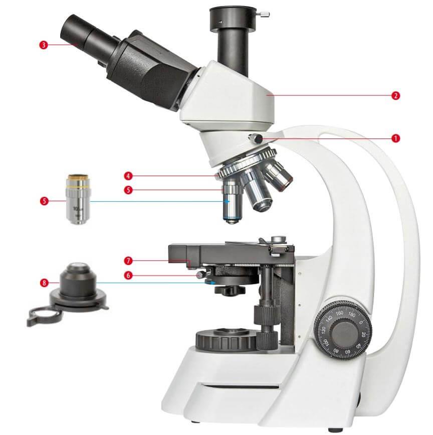 Microscope Bioscience 40-1000x trinoculaire