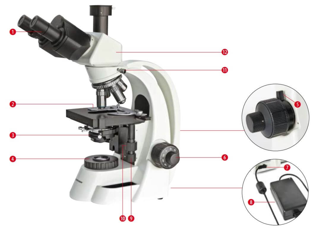 Composants du microscope Bioscience 40-1000x trinoculaire