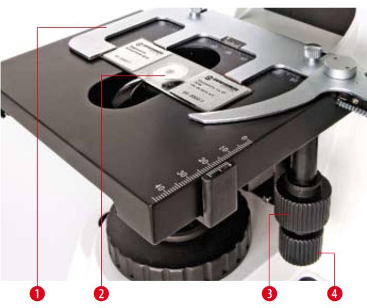 Microscope Biosciences trinoculaire  Platine intégrée avec commande coaxiale